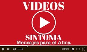 VIDEOS SINTONIA